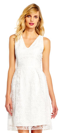 Sleeveless Lace Fit and Flare Dress with V-Neckline