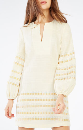 Keely Metallic Embroidered Dress