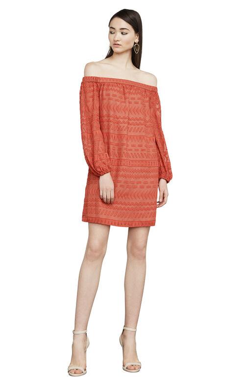 Anitra Burnout Off-The-Shoulder Dress