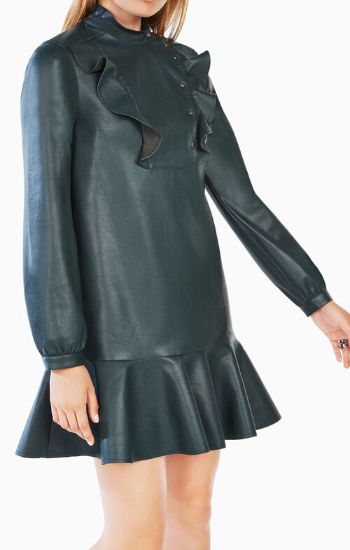 Preslie Faux-Leather Dress