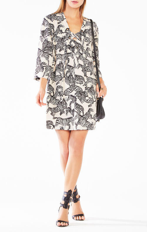 Tonya Zebra Print Tunic Dress