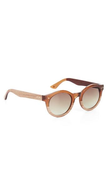 Retro Circle Plastic Sunglasses