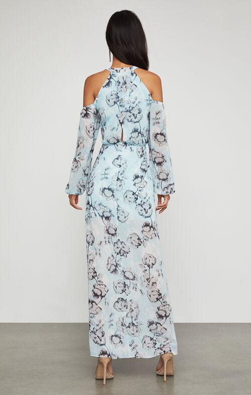 Isabele Floral-Print Maxi Dress